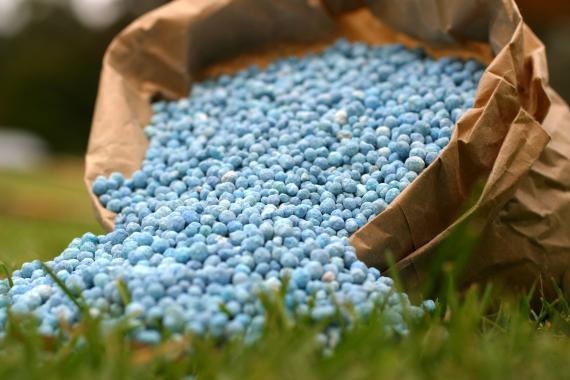 fertilisant de gazon
